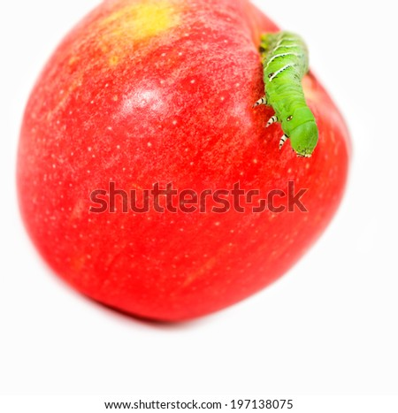 A green caterpillar crawling on a red apple.