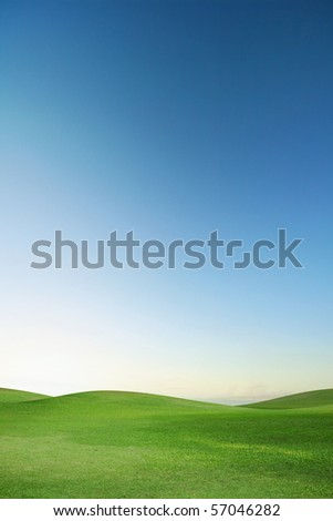 A green field with blue sky - stock photo