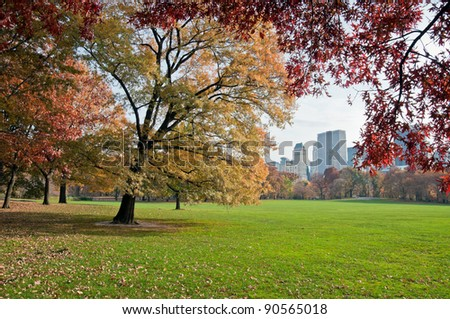 A green lawn in Central Park in New York City, Fall - stock photo