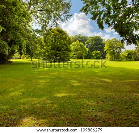 A green lawn in the park summer day. Summer landscape. - stock photo