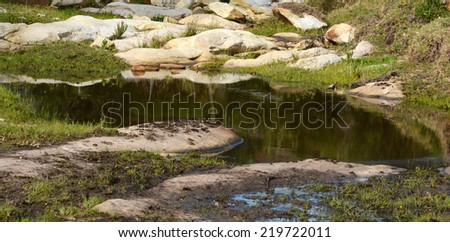 A green little lake surrounded by muddy soil and rocks on a farm in South Africa. - stock photo