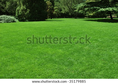 A green meadow in a park, ideal place for rest and party. - stock photo