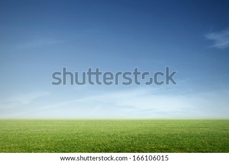 a green meadow with blue sky - stock photo