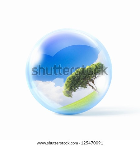 A green tree inside a transparent glass sphere - stock photo