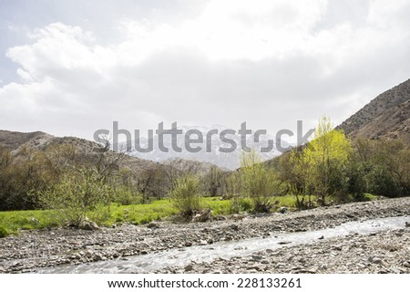 A green valley with a small shallow stream and  vegetation in the front and a big snowy mountain in the horizon and clouds on the top, in the Atlas Mountains in Morocco in the spring. - stock photo