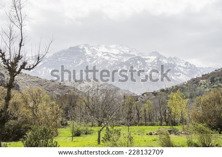 A green valley with vegetation in the front and a big snowy mountain in the horizon, in the Atlas Mountains in Morocco in the spring. - stock photo