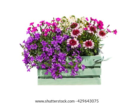 A green wooden box with many garden flowers on white background.