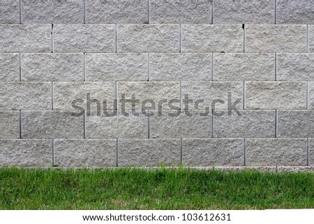 A grey cement block wall background with grass near the bottom of the frame