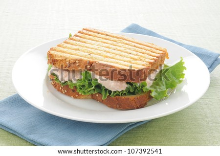 a grilled tuna sandwich on a plate - stock photo