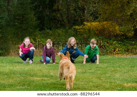 A group of children call a Golden Retriever puppy dog.  The dog is running towards them in a field of green grass. - stock photo