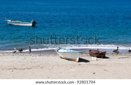 A group of fishing boats on the beach accompanied by pelicans - stock photo