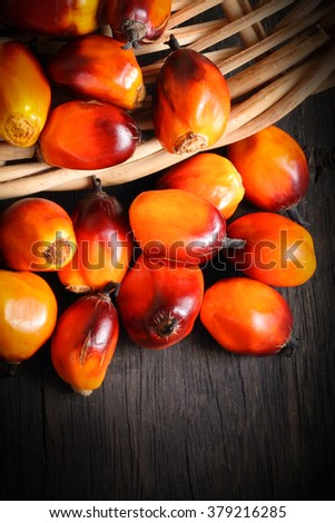 A group of fresh and ripe oil palm fruits in basket - stock photo