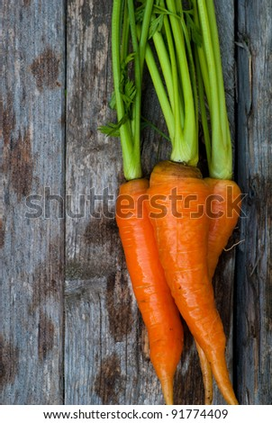 A group of fresh, orange carrots.