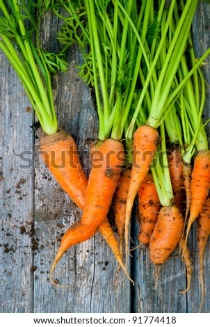 A group of fresh, orange carrots