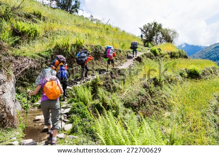 A group of people hiking through a scenic terrace plantation in Nepal - stock photo
