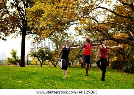 A group of people in the park stretching - stock photo