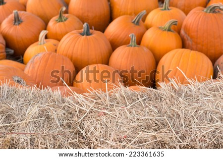 A group of pumpkins in soft focus with a horizontal foreground of the top of a hay bale in sharp focus.