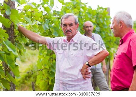A grumpy old man being angry to his son in the background, an other senior man trying to pacify them. - stock photo