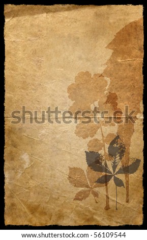 A grunge old paper background with floral sillhouette - stock photo