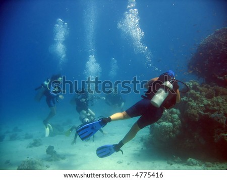 A guided dive - stock photo