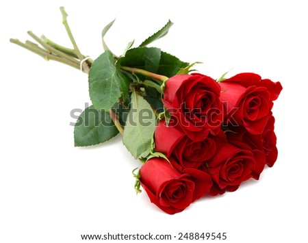 A half dozen of red rose bunch  - stock photo