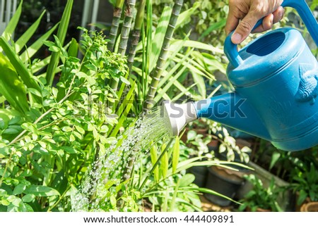 A hand hold the blue watering pot to pouring the plant in the small house's garden