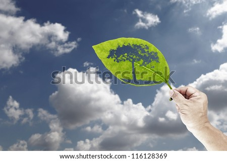 A hand holding a green leaf with an outline shape of a tree against a blue cloudy sky. - stock photo
