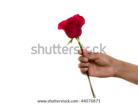 A hand holding a rose as a symbol of love