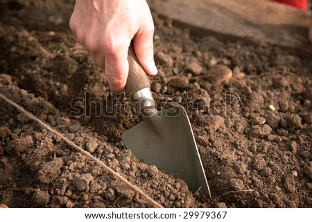 A hand holding a trowel which is cutting into the earth - stock photo