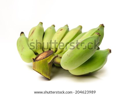 a hand of raw green Cultivated bananas - stock photo
