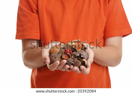 A handful of fragrant natural potpourri. - stock photo