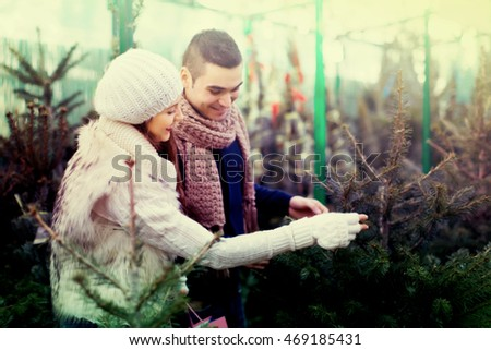 A happy couple searching for a perfect New Year tree on a fir market. Selective focus on woman.