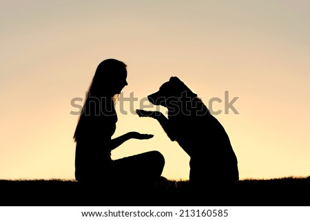 a happy girl is sitting outside in the grass, shaking hands with her German Shepherd dog, silhouetted against the sunsetting sky - stock photo