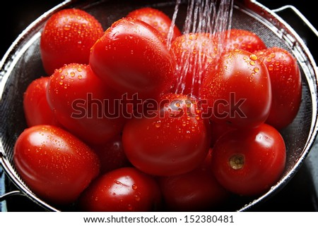 A harvest of Roma Tomatoes fresh from the garden are washed in the kitchen sink prior to being used for cooking. - stock photo