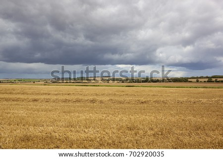 a harvested wheat field with scenic hills and hedgerows under an inky blue stormy sky in the yorkshire wolds in summer