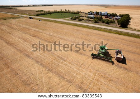 A harvester filling a grain truck with farm yard in background - stock photo