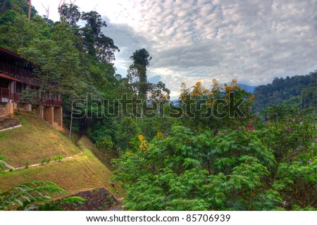 a HDR view of a building in a forest against a cloudy sky - stock photo