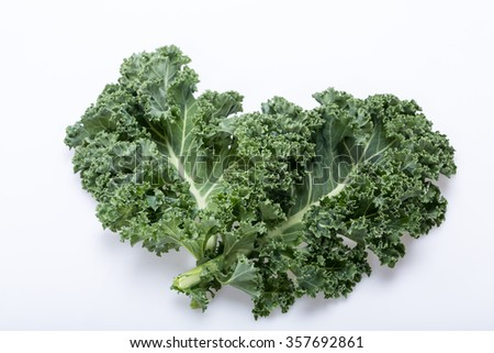 A healthy fresh curly kale - stock photo