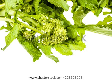 a heap of turnip greens isolated over a white background - stock photo