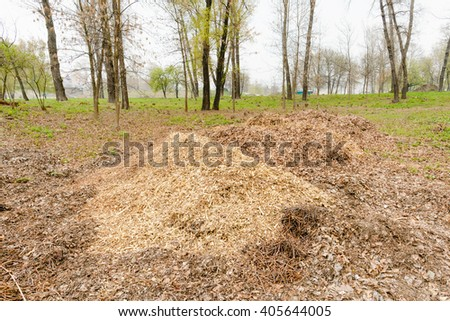 A heap of various crushed branches and leaves to prepare compost under the trees in the forest - stock photo
