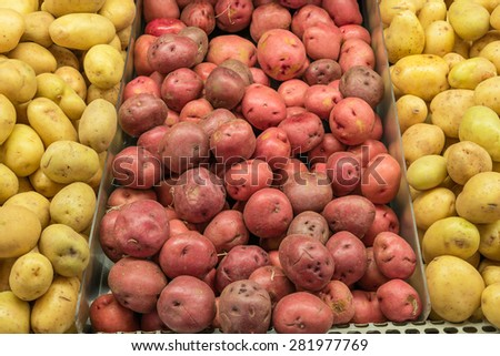 A heap of yellow finn, red and white potato tuber in a supermarket at Colfax, Whitman County, Washington, USA. Concept of pattern texture and background. - stock photo