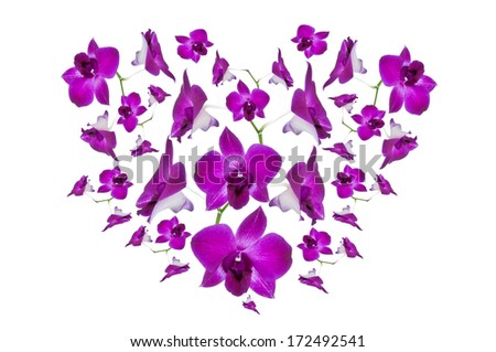 A heart created from purple orchids isolated on a white background suitable for valentine. - stock photo