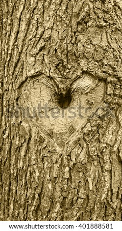 A heart motif carved into the trunk of a tree. Sepia edit.