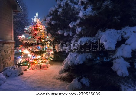 A heavy snow falls quietly on this Christmas Tree, accented by a soft glow and selective blur, illustrating the magic of this Christmas Eve night time scene. - stock photo