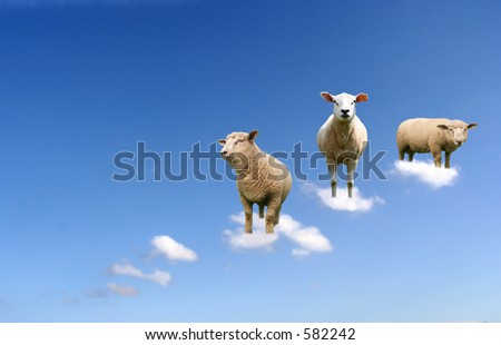 A herd of sheep on clouds. - stock photo