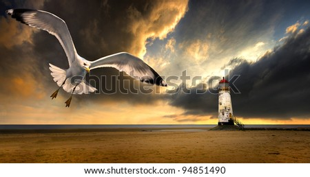 a herring gull soaring inshore from a storm at sea with a lighthouse and stormy, dramatic sky in the background