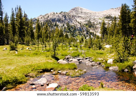 A high sierra meadow and slow moving creek - stock photo