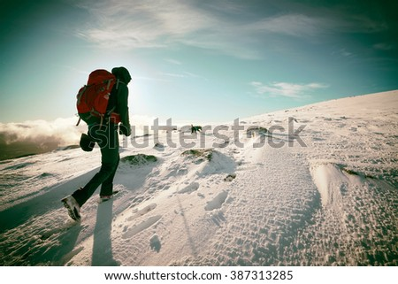 A hiker and their dog on a snow covered summit in the Scottish Highlands, UK. Added grain and colour styling. - stock photo