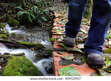 A hiker walks across a bridge in the rainforest of Squamish. - stock photo