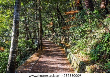 A hiking trail in Mt. Takao, Tokyo, Japan - stock photo